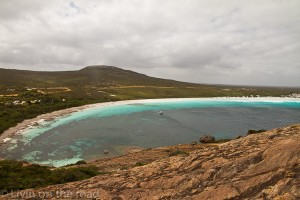 Looking out over Lucky bay